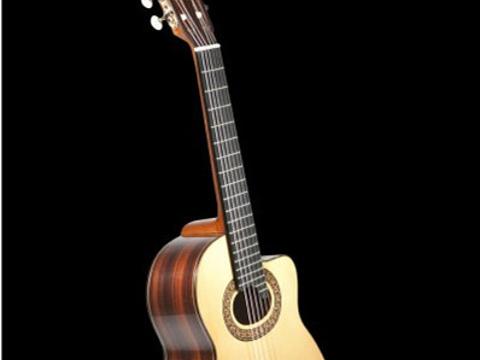 Francisco solís guitarras旅游景点图片