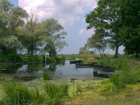 布里耶尔沼泽地旅游景点图片
