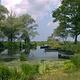 布里耶尔沼泽地