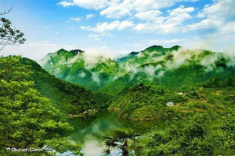 三寨谷森林公园的图片
