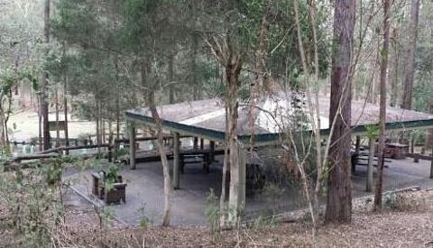 菊花山考拉保护中心