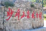 妙峰山森林公园