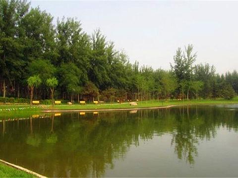 仁和公园旅游景点图片