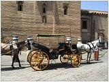 乘坐马车游览老城区