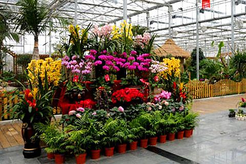 花卉园艺展示馆