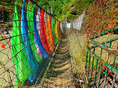 藤网桥旅游景点图片