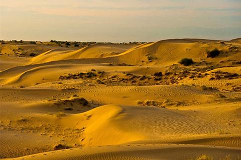 图开沙漠的图片