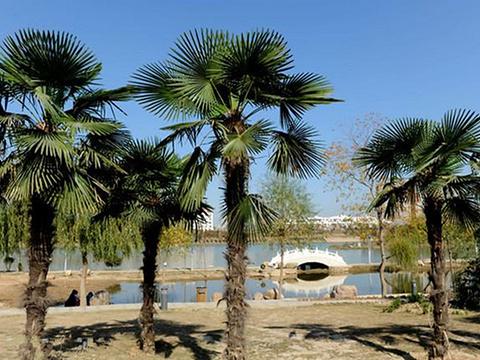 漯河市沙澧河风景区旅游景点图片