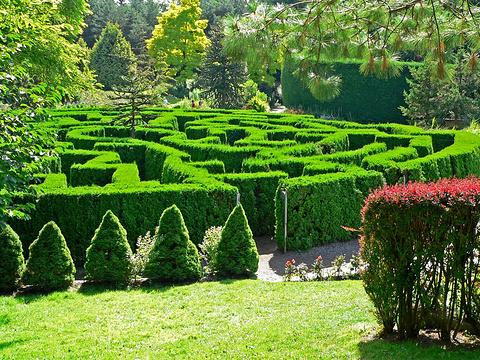 温哥华植物园旅游景点图片