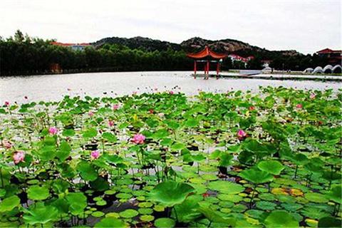 隆霞湖风景区的图片