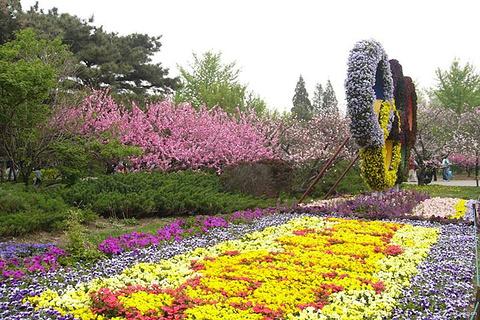 万紫千红植物园的图片