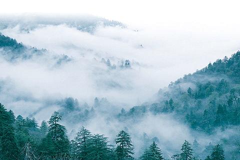 宁波九峰山景区
