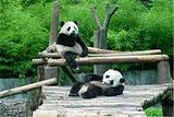 阿德莱德动物园