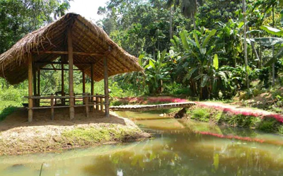 Doowa Yoga & Ayurveda Retreat Center