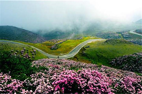 乌蒙大草原的图片
