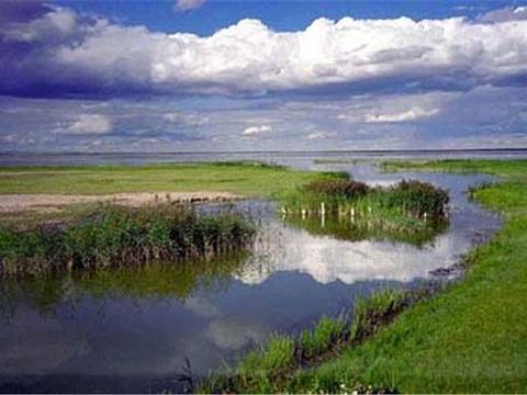 淖干诺尔草原旅游景点图片