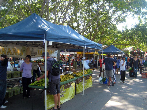 Northey Street Organic Markets旅游景点图片