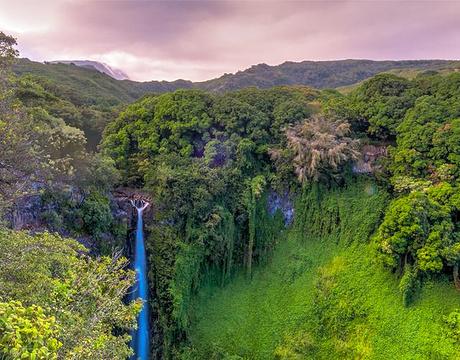 哈莱阿卡拉国家公园的图片
