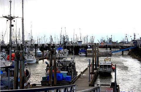 Richmond 渔人码头