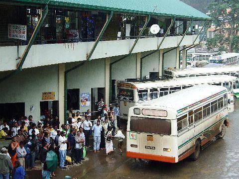 努瓦勒埃利耶汽车总站旅游景点图片
