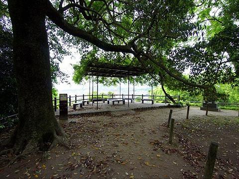 谏早公园旅游景点图片
