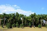 东湖南公园