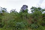 Umbogavango Nature Reserve