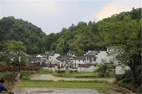 黄村的图片