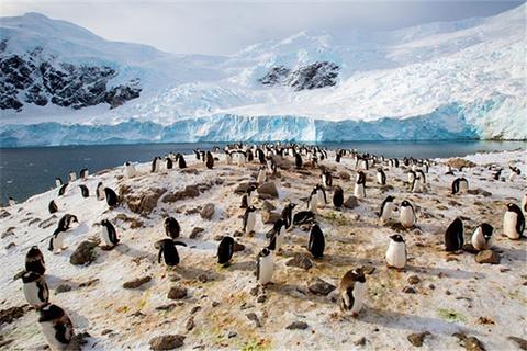 南极半岛旅游景点图片