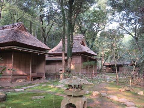 立田自然公园旅游景点图片