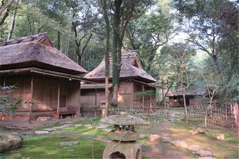 立田自然公园的图片