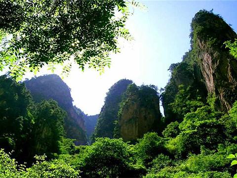 贵清山旅游风景区旅游景点图片
