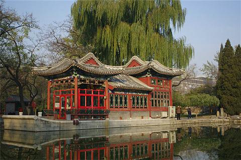 日坛公园的图片