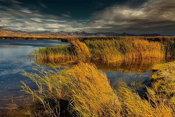 可可西里湖旅游图片