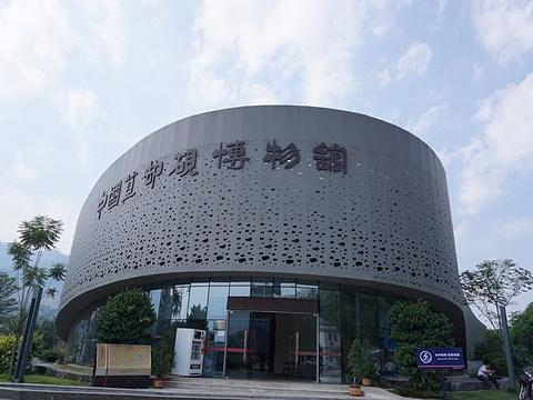 中国苴却砚博物馆