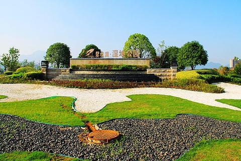 碧桂园湿地公园