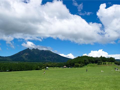 日本高森町公园旅游景点图片