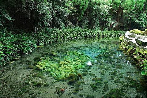 白川水源产品