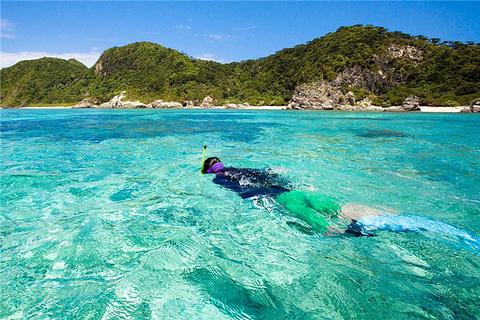 Snorkeling/浮潜