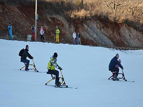 蓟洲国际滑雪场旅游景点图片