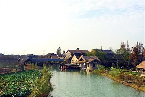 乌村的图片