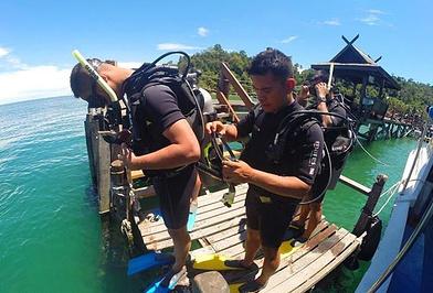 Downbelow Marine & Wildlife Adventures