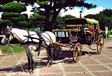 济州赛马公园