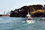济州游览船