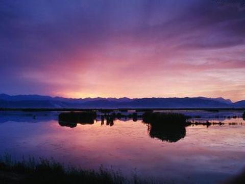 石嘴山星海湖旅游景点图片