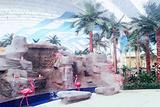 亚布力森林温泉