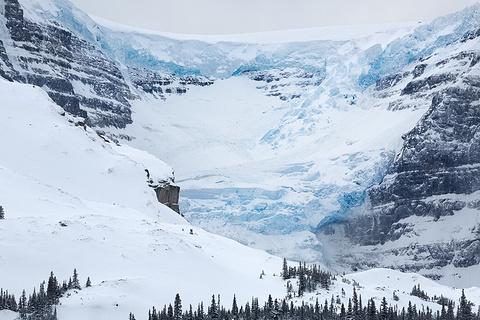 阿萨巴斯卡冰川