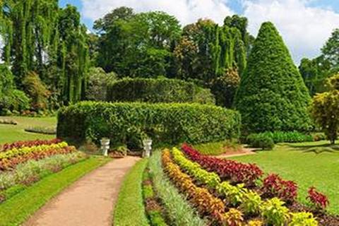 马塔莱香料花园