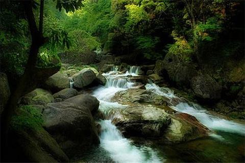 大口国家森林公园的图片