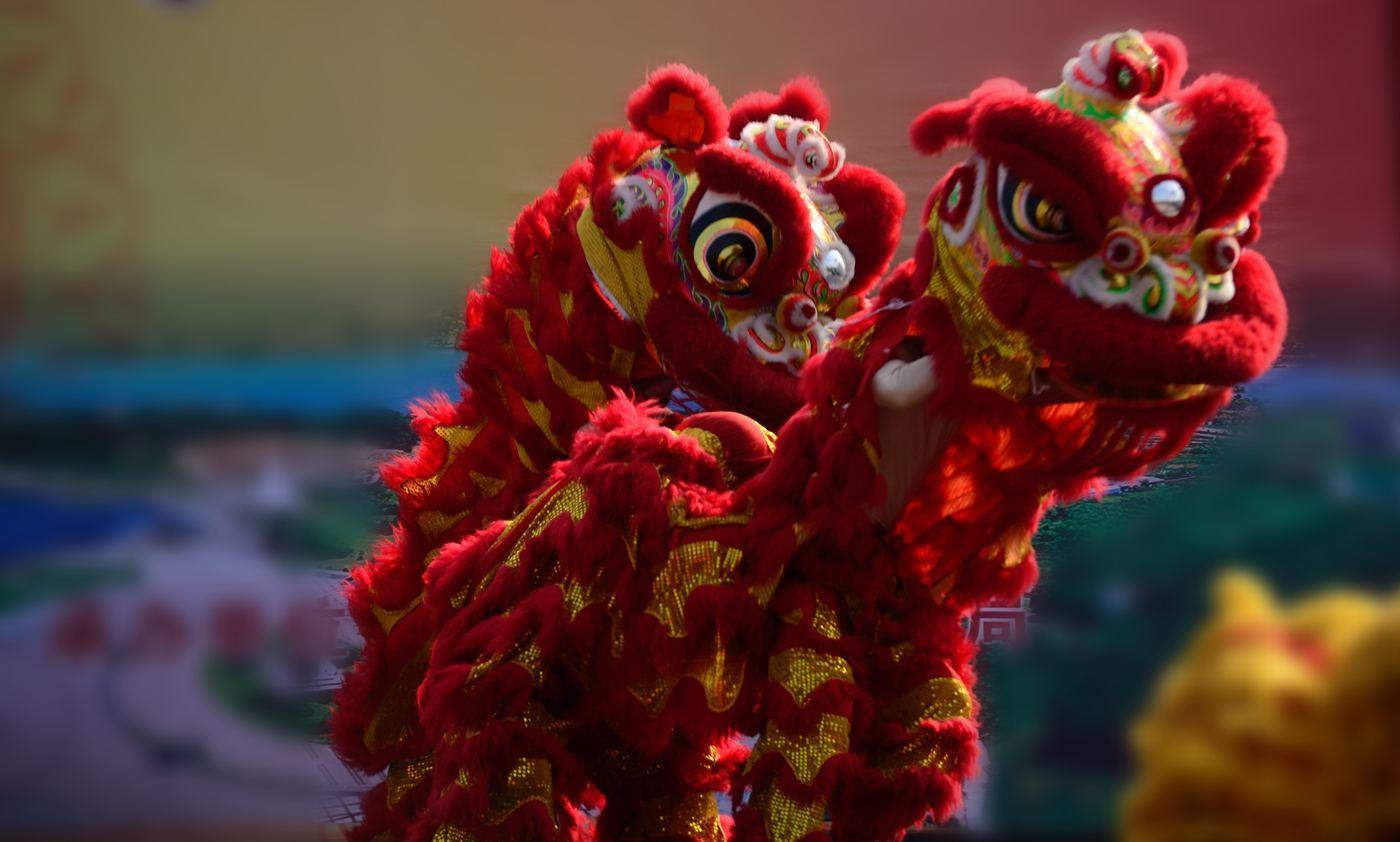 惠州龙腾狮跃闹元宵活动